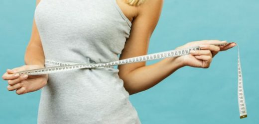 Weight Loss: Typically The Most Popular Diets
