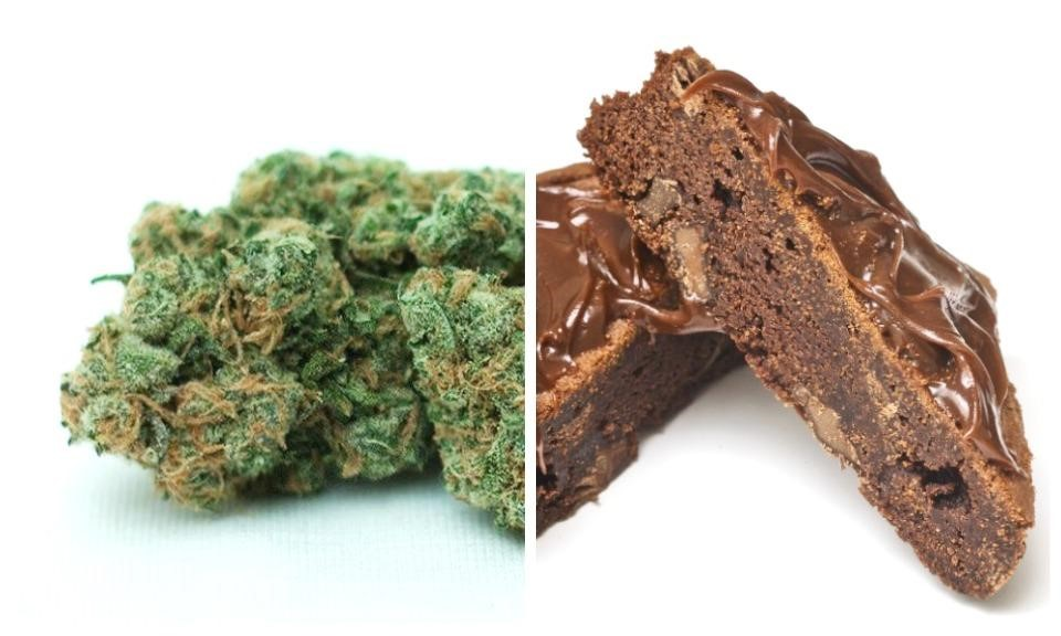 Cannabis 101: Things Users Must Know About Cannabis Edibles!